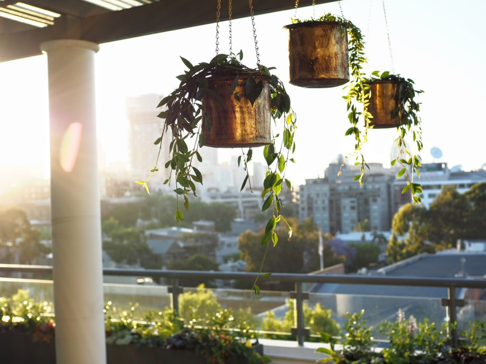 People have different choices when they want to build a balcony garden. For some people, they want a simple garden, while for others, they want a perf