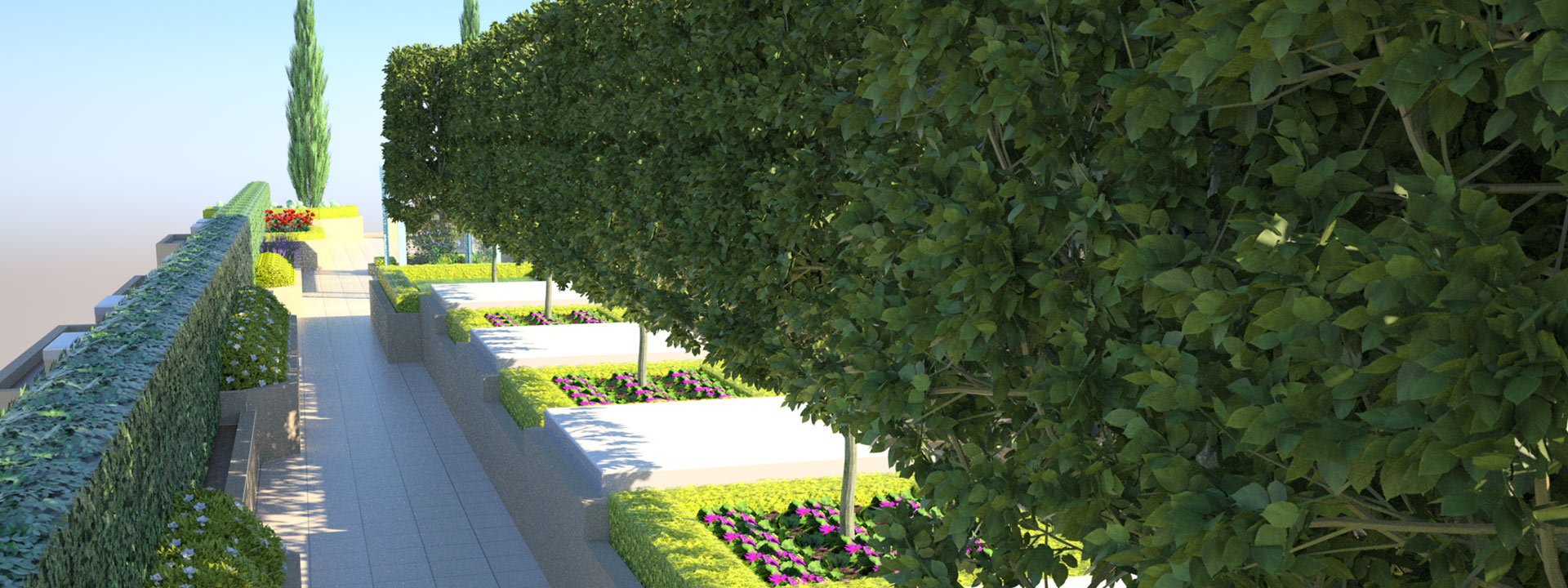prunned hedge walls